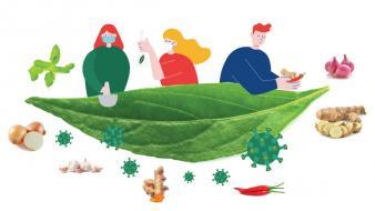 พืชผักสมุนไพรป้องกันโรค COVID 19