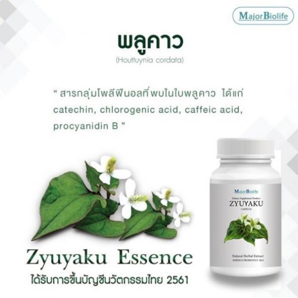 ซุยยากุ แคปซูล Zyuyaku capsules-4